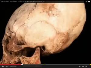 8 crâne Maya c