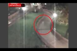 Une ombre phantomatique captée par une caméra de surveillance