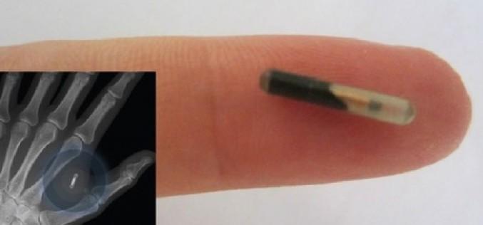Il s'implante une puce NFC pour pirater des appareils sous Android