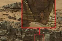 Un crabe géant sur la planète Mars ?