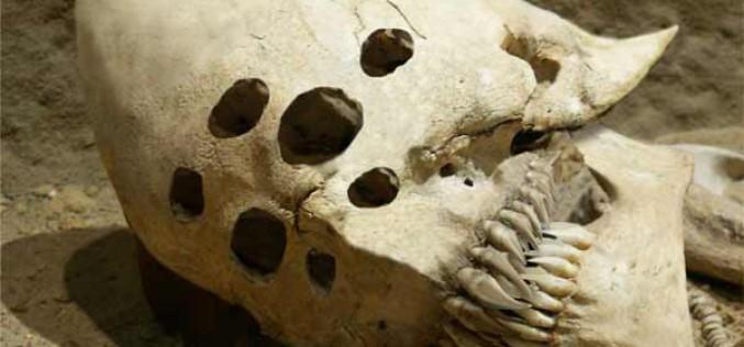 Les 5 crânes les plus étranges jamais découverts