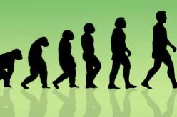 Un homme primitif aurait survécu à l'homme moderne