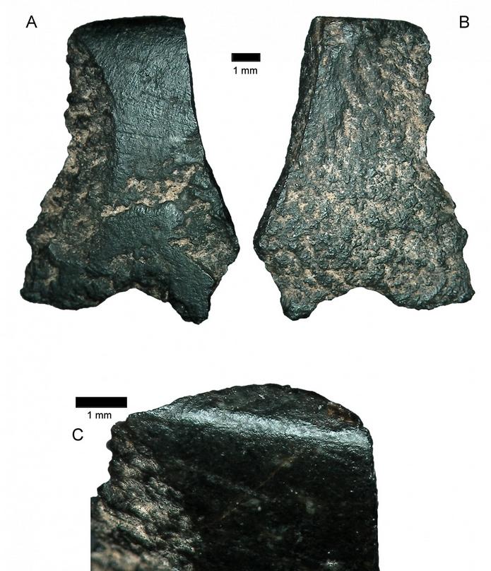 Fragments de la hache qui a été retrouvée à Kimberley, la plus vieille du monde.