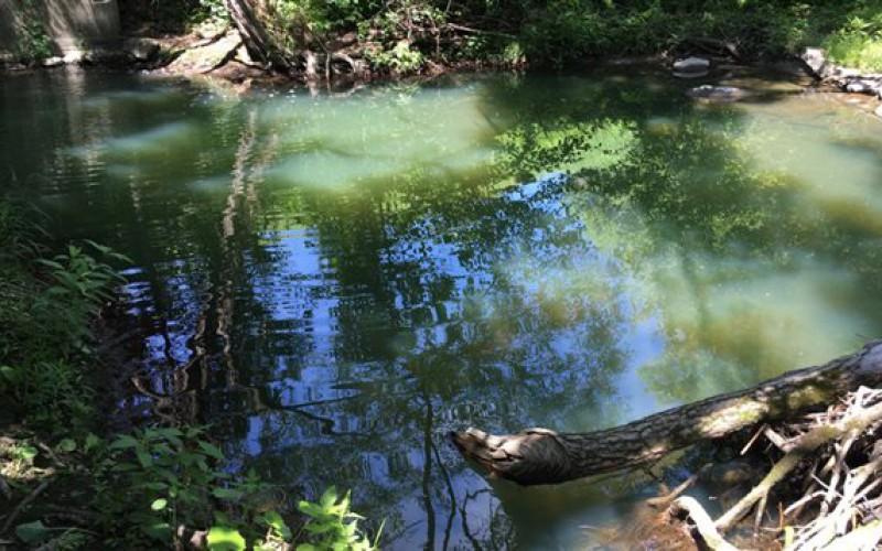 Le mystère de l'eau bleue persiste dans le ruisseau Lyon à Sherbrooke