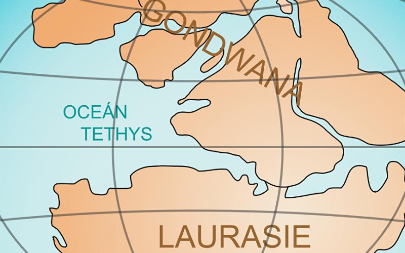 Un supercontinent disparu découvert au fond de l'océan Indien