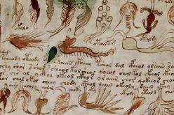 Le manuscrit secret de Voynich