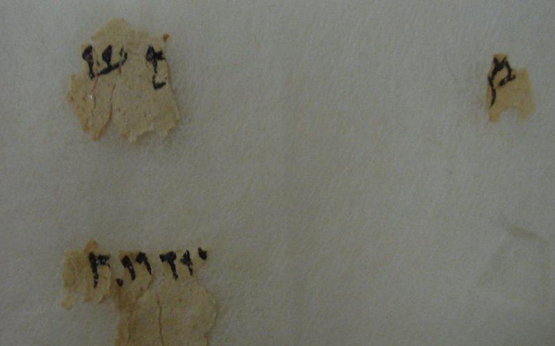 Les manuscrits de la mer Morte livreront bientôt de nouveaux secrets
