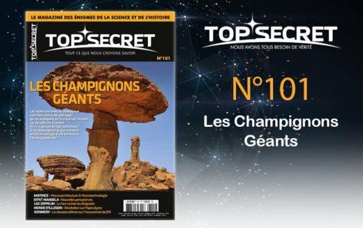 TOP SECRET 101
